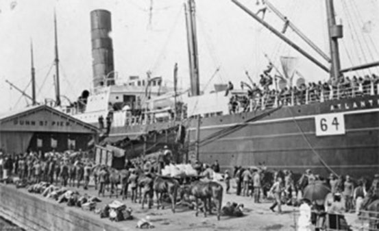 Loading horses for the NSW Citizens Bushman's Contingent to China on the Alantia, Sydney, 1900