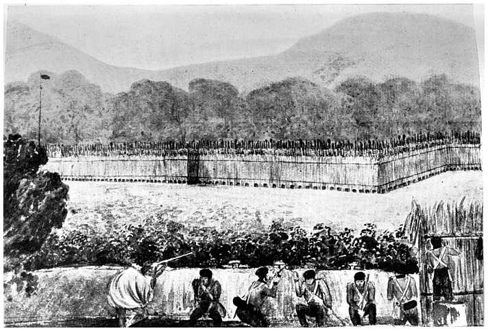 Maori fort